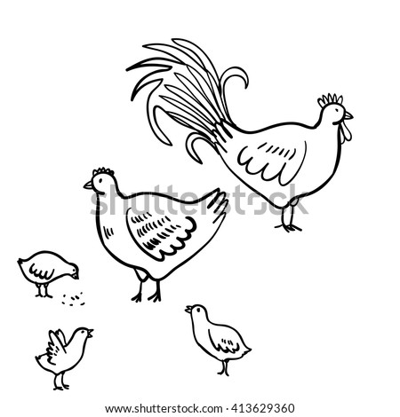 Vector illustration set with  rooster, hen and chicken. Doodle  rooster, chicken and hen. Cute doodle illustration with domestic birds on white background. - stock vector
