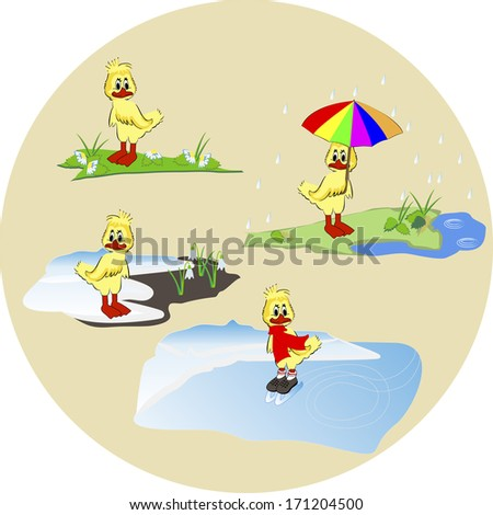 vector illustration small ducklings in winter, summer, autumn and springtime  - stock vector