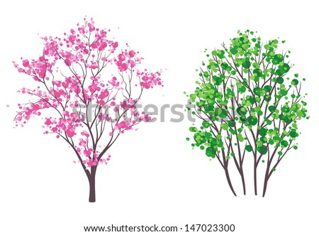 Vector illustration: spring and summer trees, isolated on white - stock vector