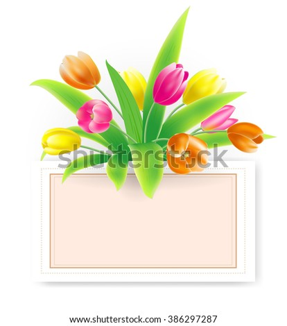 vector illustration spring banner with bouquet of tulips in red, yellow, pink color on white background with a paper sheet decorative vintage frame and drop shadow from its