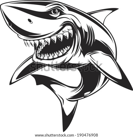 Vector illustration: toothy white shark - stock vector