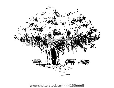 Vector illustration.Tree and benches. Sketch. Hand drawing. - stock vector