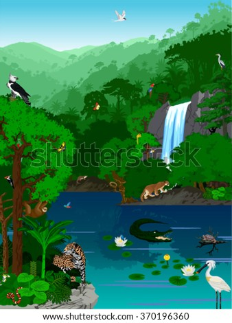 Vector Illustration Tropical jungle lake with animals