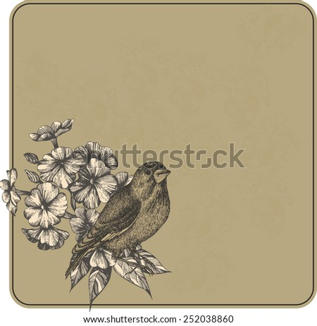 Vector illustration. Vintage background with flowers and birds, hand-drawing. - stock vector