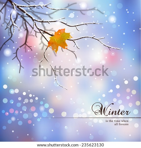 Vector illustration.Winter composition with evening street and the last leaf on the tree.
