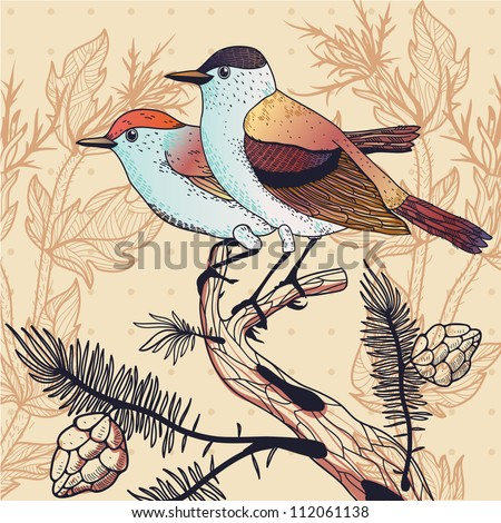 vector illustration with a couple of colorful forest  birds