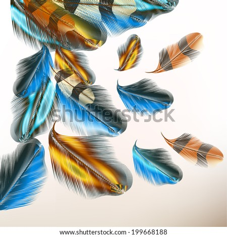 Vector illustration with colored vector feathers for your design - stock vector