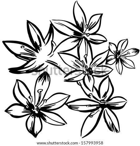 Vector illustration with flowers / black and white - stock vector