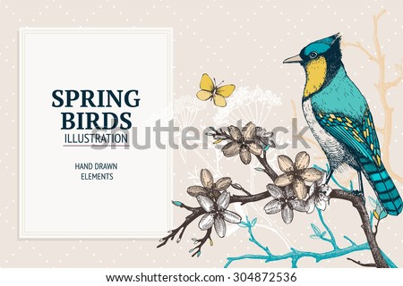 Vector Illustration With Hand Draw Bird On Blooming Tree Twig Vintage Sketch Of Beautiful Birds