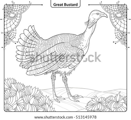 vector illustration with male great bustard or otis tarda in contour style isolated on white background