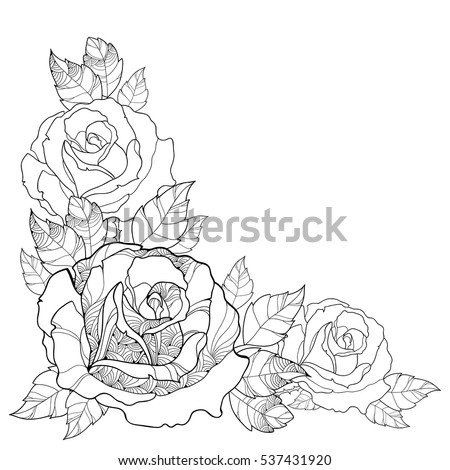 Vector Illustration With Outline Rose Flower And Foliage Isolated On White Background Floral Elements
