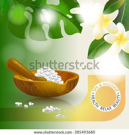 Vector illustration with  spa accessories pounders, pestle and salt - stock vector