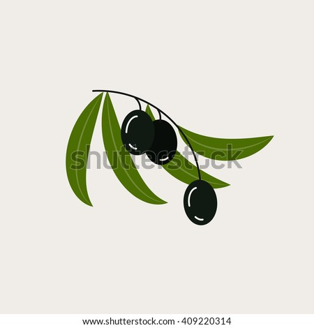 Vector illustration with the image of olives. It can be used as logo for olive oil, for nature cosmetics brand.