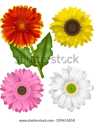 Vector Illustrations of the Sunflower Family.  Gaillardia, Sunflower and a Pink and White Gerbera.  Each Bloom is grouped for ease of use. - stock vector
