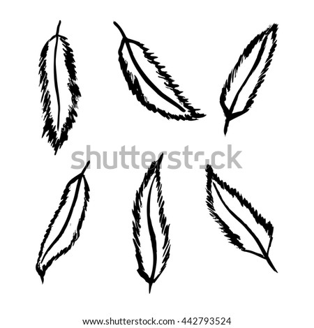 Vector illustrations of various bird feathers in grunge style. - stock vector