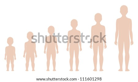 Vector illustrations. Templates of man-child's figure. Change in proportions from 1 to 10 years. Silhouettes - stock vector