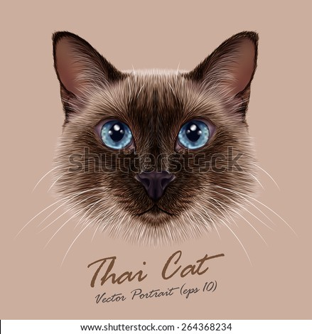 Vector Illustrative Portrait of a Thai Cat. Cute seal point Traditional Siamese Cat. - stock vector
