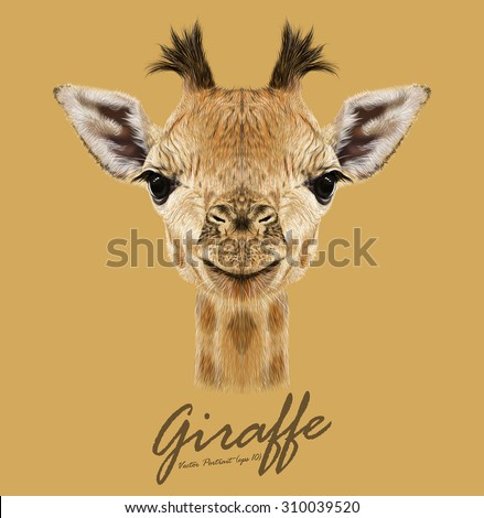 Vector Illustrative portrait of Giraffe.Cute attractive face of young giraffe with horns. - stock vector