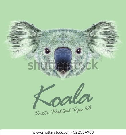 koala stock images royalty free images vectors shutterstock. Black Bedroom Furniture Sets. Home Design Ideas