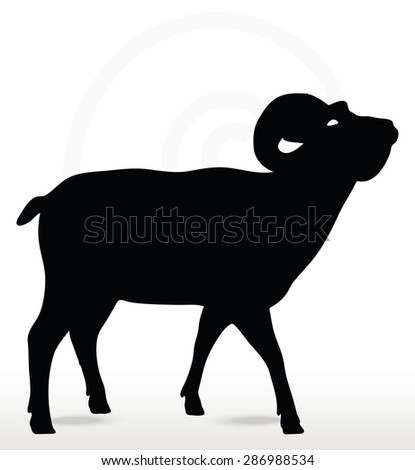 Vector Image - big horn sheep silhouette in face upward pose isolated ...