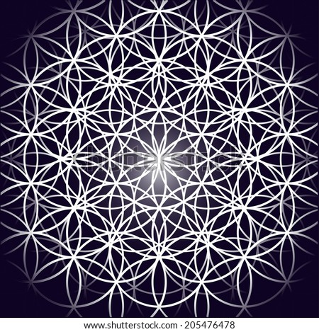 Vector image / Flower of life  - stock vector