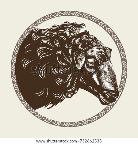 Vector Image Of A Sheeps Head In The Style Engraving Agricultural Vintage Emblem