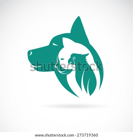 Vector image of an dog cat and bird on white background. Animal design - stock vector