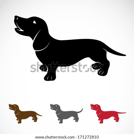 Vector image of an dog (Dachshund) on a white background - stock vector