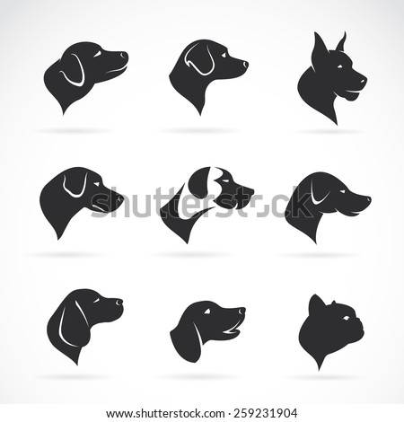 Vector image of an dog head on white background - stock vector