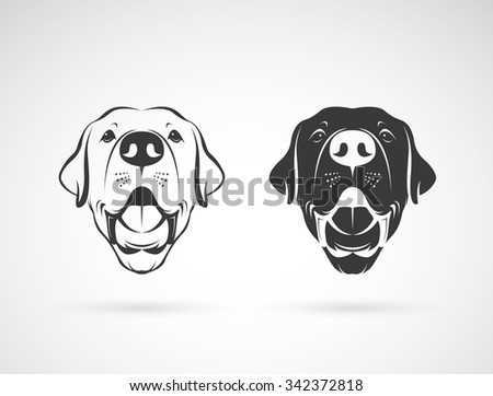 Vector image of an dog labrador head on white background, Animals - stock vector