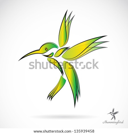 Vector image of an hummingbird on white background - stock vector
