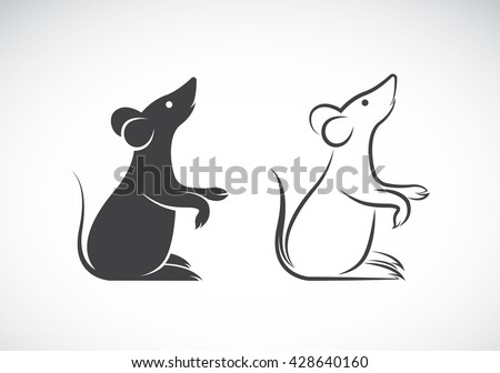 Vector image of an rat design on white background, Vector rat for your design. - stock vector