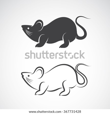 Vector image of an rat design on white background, Vector rat for your design, Rat Icon Art - stock vector