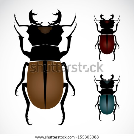 Vector image of an stag beetle  - stock vector