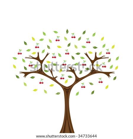 Vector image of cherry tree isolated on white