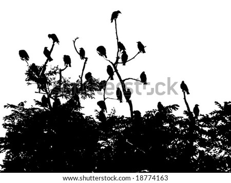 Vector image of flock of birds sitting on branches - stock vector