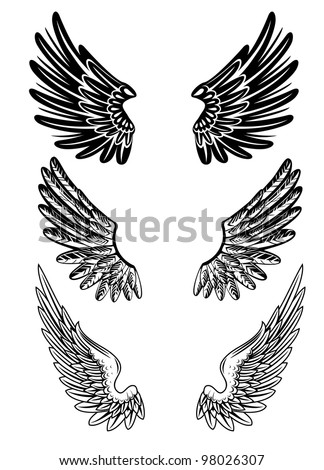 Vector image of various wings