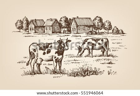 vector image of village and landscape farm