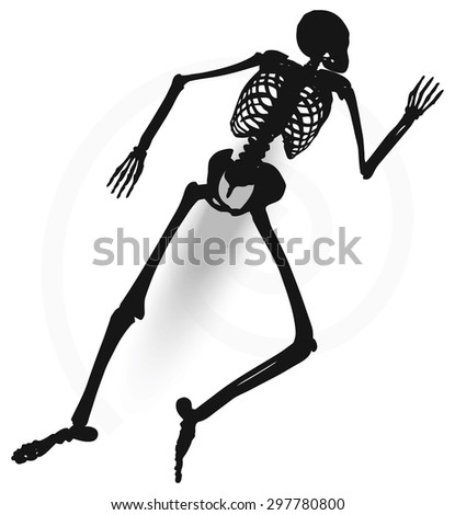 Vector Image - skeleton silhouette in prone pose isolated on white background