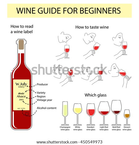 wine knowledge for beginners pdf