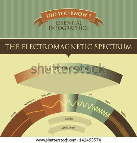 Vector Infographic - The Electromagnetic Spectrum  - stock vector