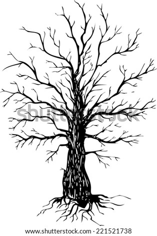 Vector ink drawing tree, hand drawn  illustration