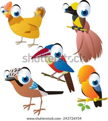 vector isolated cartoon cute animals set: birds: hen, bird of paradise, cockerel, jay, arasari - stock vector