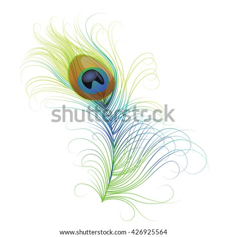 Vector isolated peacock feather. EPS 10 on white background - stock vector