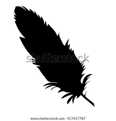 vector, isolated silhouette feather