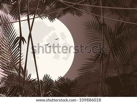 vector jungle forest in moon night - stock vector