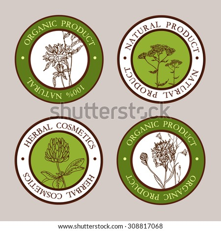 Vector label  with hand-draw wild flowers and herbs. Layout, mockup design for cosmetics, store, natural and organic products
