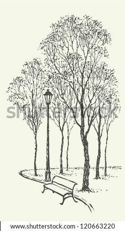 Vector landscape. Sketch a park bench near the lantern under the tall trees - stock vector
