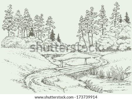 Vector landscape. The path leading through with boards bridge over the creek, surrounded by summer meadow and pine forest - stock vector