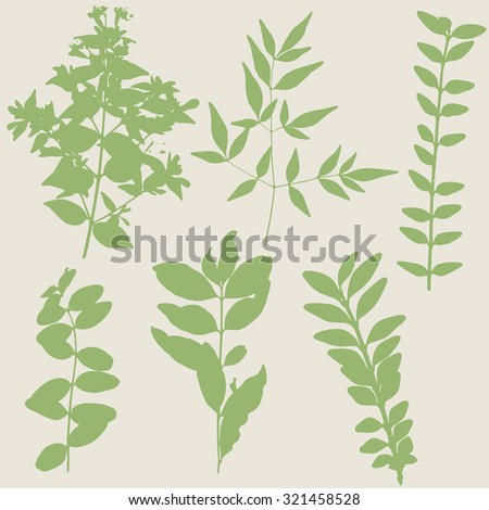 Vector leaves and branches silhouettes - autumn, spring, seasonal, nature design elements.